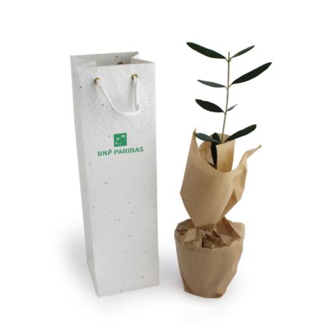Plant d'arbre publicitaire avec sac à semer
