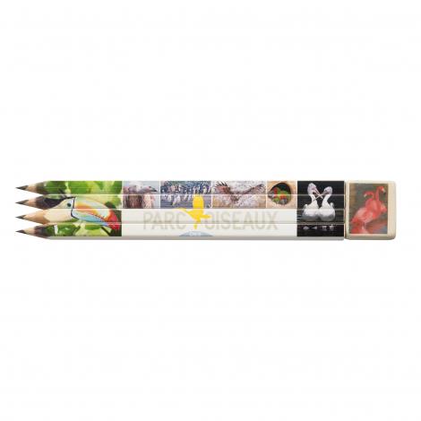 Set quadri mine graphite vernis blanc, publicitaire
