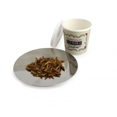 Insecte en pot ou sachet personnalisable