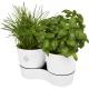 Pot culture publicitaire herbes aromatiques MEPAL