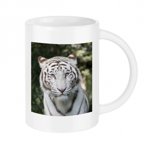 Mug publicitaire - Pics Two