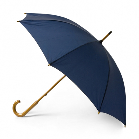 Parapluie avec manche et poignée en bois