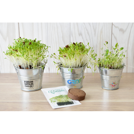 Kit de plantation en pot zinc personnalisable