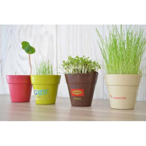 Kit de plantation pot biodégradable personnalisable