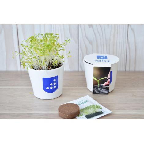 Kit de plantation en pot céramique personnalisable.