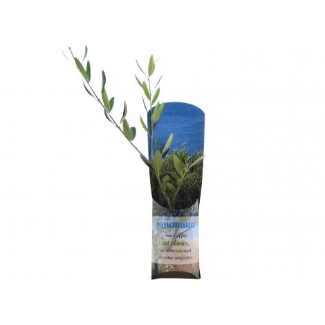 L'étui arbre personnalisable.