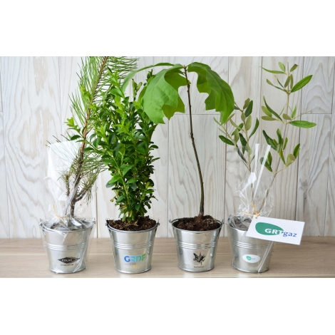 Plant d'arbre en zinc publicitaire