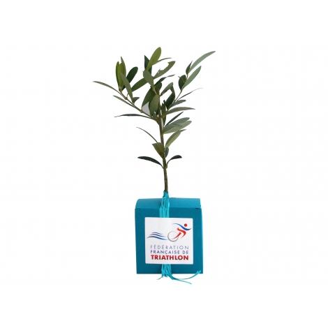 Cube publicitaire avec plant d'arbre